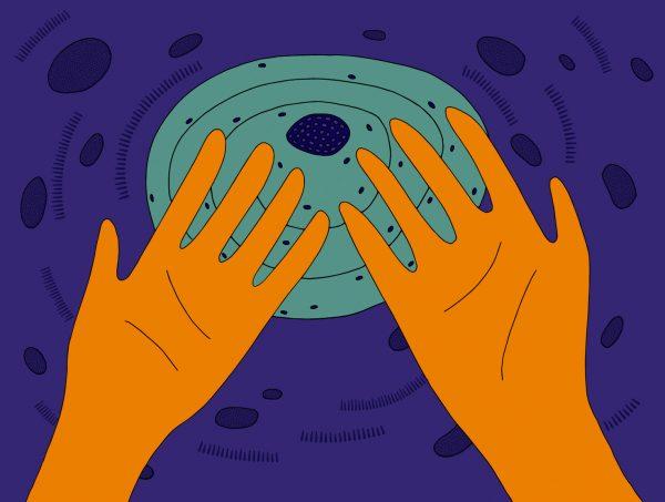 Troubles obsessionnels compulsifs et confinement, Roseaux, magazine féministe